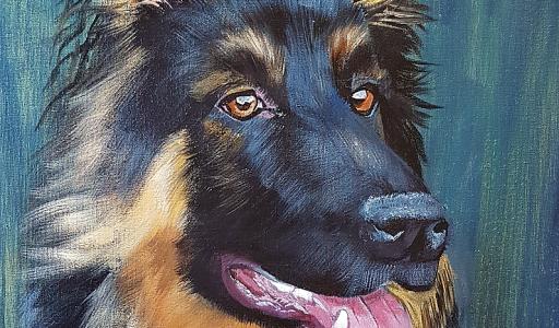 Altdeutscher Schäferhund